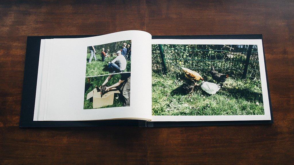 Magazin-Stadtpflanzer-11.jpg
