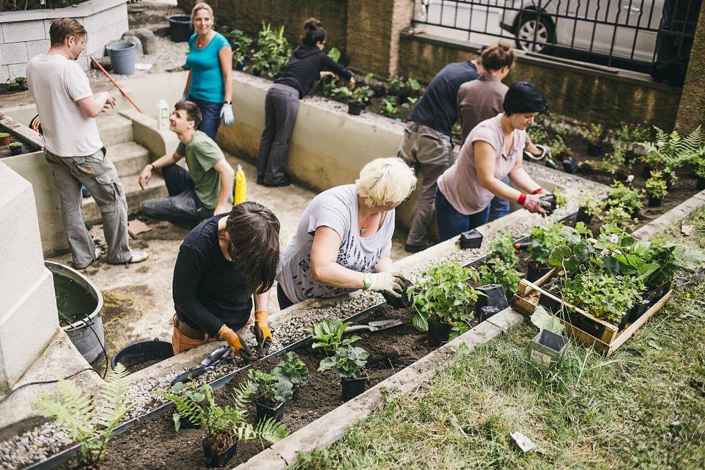 """Stadtpflanzer e.V. - """"Eine neue Stadt ist pflanzbar"""""""